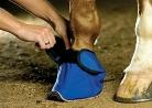 Védőcipő Equivet Slipper L